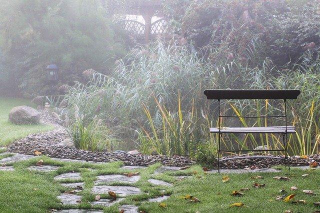 mlha na zahradě