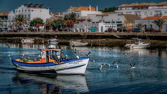 loďky v přístavu